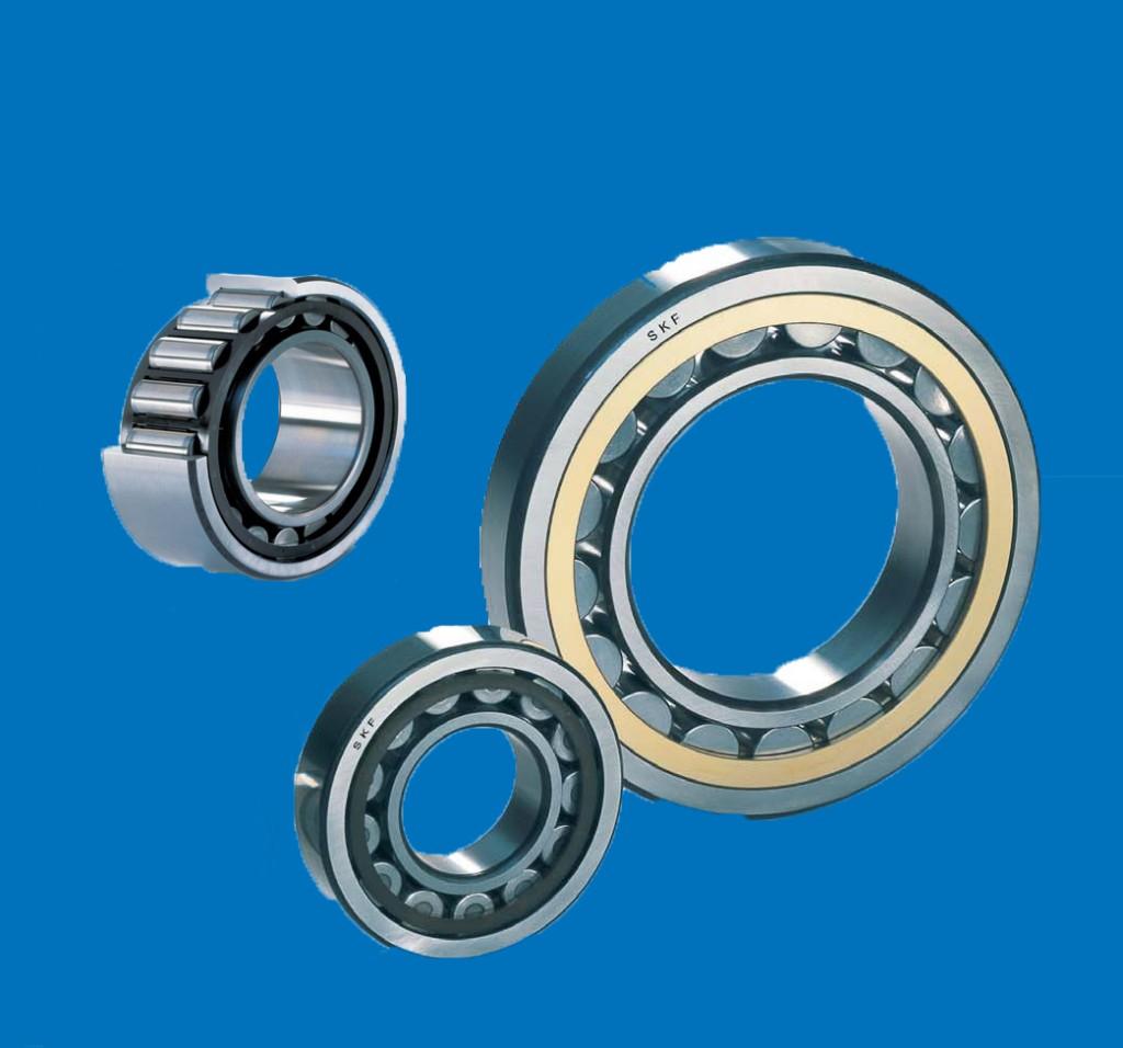 Rulmenti radiali cu role cilindrice