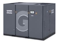 G 110-250
