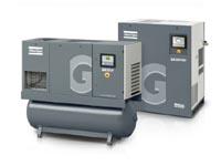GA11+-30GA 15-30 VSD